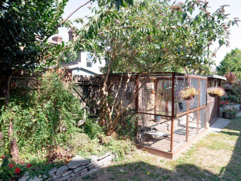 Bluebell Nursing Home garden